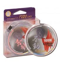 FUDO (100m)